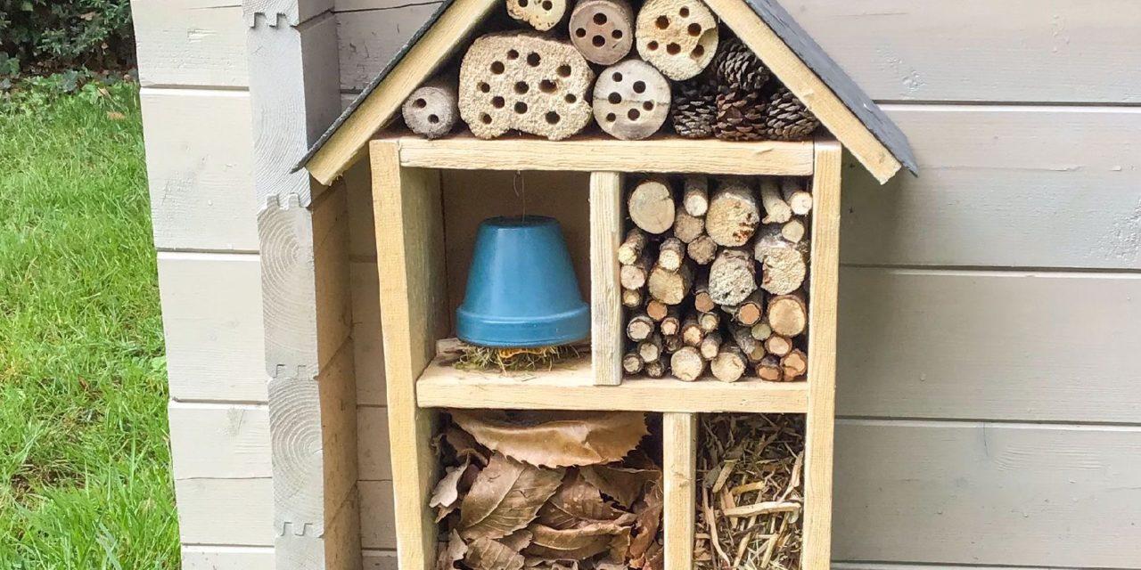 TUTO – Comment fabriquer un hôtel à insectes facilement