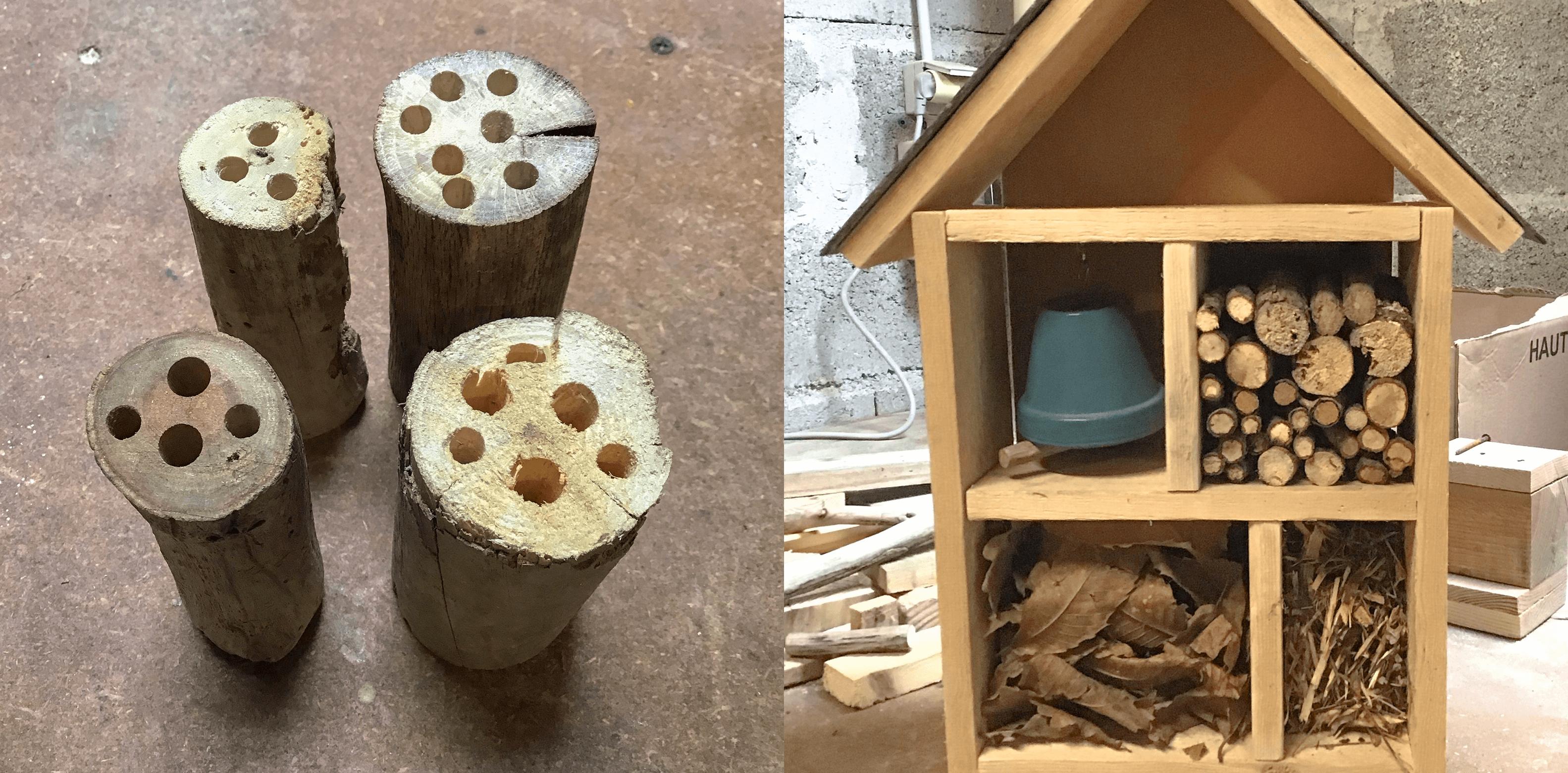 maison insectes7